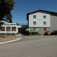 Hotel Pictures: Penzion Velke Darko, Karlov