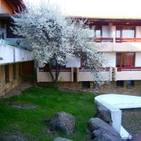 Hotel Pictures: Hotel Izvorite, Mineralni Bani