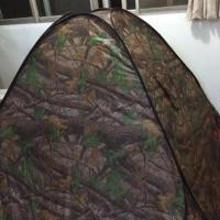 Mainland Chinese Citizens-Tent