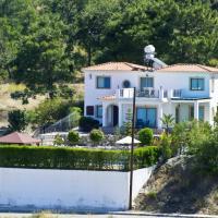 Hotel Pictures: Mersinia Villa, Argaka