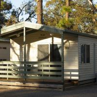 Deluxe Cabin with Park View 1