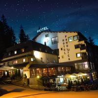 Hotel Pictures: Hotel Pahuljica, Vlasic