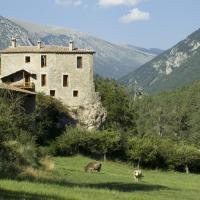 Hotel Pictures: Cal Pallerola, Montargull de la Vansa