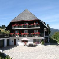 Hotel Pictures: Villa Hubertus, Feldberg