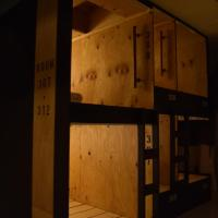 Bunk Bed in Mixed Dormitory Room with Shared Bathroom