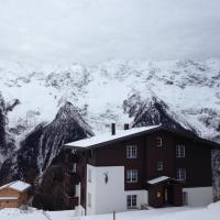 Hotel Pictures: Alpine Village Loetschental, Wiler