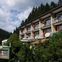 Hotelbilleder: Pension Harzperle, Wildemann