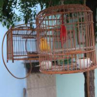Hotel Pictures: Qingzhou Wangri Shiguang Youth Hostel, Qingzhou