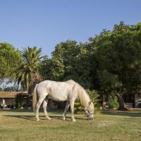 Hotel Pictures: Hotel Mas Des Barres, Saintes-Maries-de-la-Mer