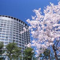 Hotellikuvia: Hotel Grand Arc Hanzomon, Tokio