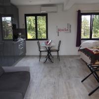 Studio with Pool View