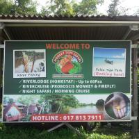 Monkey Top Safari