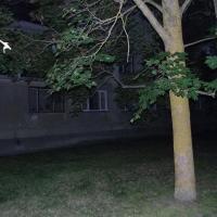 Hotel Pictures: Kivioli Apartment Soo, Kiviõli
