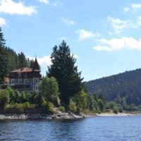 Hotel Pictures: Seehotel Hubertus, Schluchsee