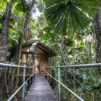 Hotel Pictures: Daintree Wilderness Lodge, Daintree
