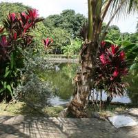 Hotel Pictures: Granja Hostal Tolcaribe, Guamo