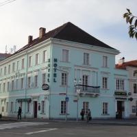 Hotel Pictures: Hotel U Hroznu, Mnichovo Hradiště