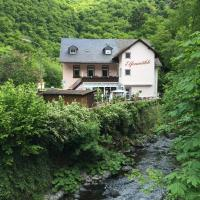 Hotel Pictures: Hotel Elfenmühle, Bad Bertrich