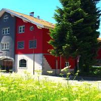 Hotel Pictures: Hotel Metzgerei Schatz, Hohenems