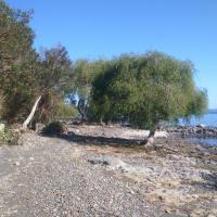 Cabañas y Camping El Manzano
