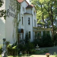 Hotel Pictures: Hotel Villa Herzog, Dresden