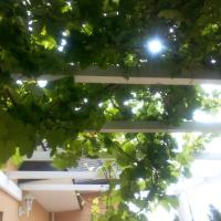 Hotel Pictures: Villa Sud Finistere, Quimper