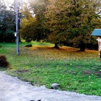 Hotel Pictures: U Dvou lipek pod Broumovskými stěnami, Broumov