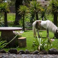 Hotel Pictures: Hosteria Rumipamba De Las Rosas, Hacienda Salachi Chico