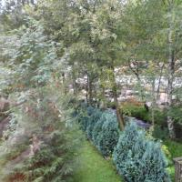 Hotel Pictures: Ferienhaus Moock, Schierke