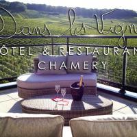Hotel Pictures: Dans les Vignes, Chamery
