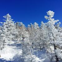Hotel Pictures: Yabuli Spring Snow Hotel, Shangzhi