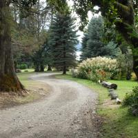 Hotel Pictures: Vulcanche, Villa Traful