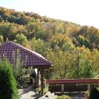 Hotel Pictures: Kashtata, Tryavna