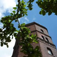 Hotel Pictures: Hotel am Wasserturm, Münster