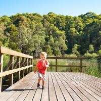 Hotel Pictures: BIG4 Yarra Valley Holiday Park, Healesville