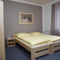 Hotel Pictures: Penzion Kouty, Loučná nad Desnou