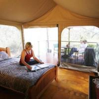 Deluxe Safari Cabin