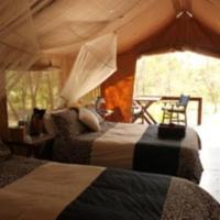 Eco Safari Cabin