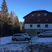 Hotel Pictures: Apartman Aneta, Železná Ruda