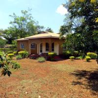 The Backyard Hostel