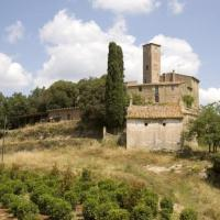 Hotel Pictures: Holiday home Castell De Castelltercol, Castelltersol