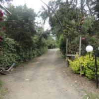 Moof Africa Organic Hostel Camp