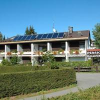 Hotel Pictures: Pension Am Regen, Bayerisch Eisenstein