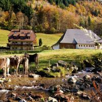 Hotel Pictures: Gasthaus zur Linde-Napf, Oberried