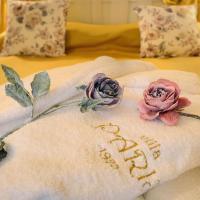 Hotel Pictures: Villa Paris, Hisarya