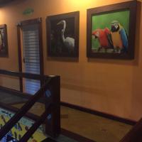 Hotel Pictures: Pousada HB Point, Boracéia