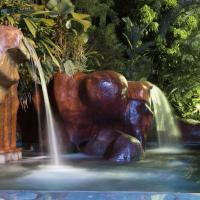 Hotel Pictures: Baldi Hot Springs Hotel & Spa, Fortuna