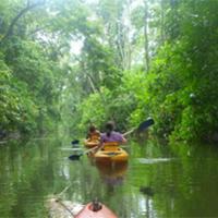 Hotel Pictures: Pachamama Jungle River Lodge - Punta Uva, Punta Uva
