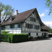 Hotel Pictures: Apartment Conrad, Knonau