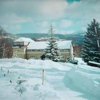 Hotel Pictures: Pension Panorama, Tanvald